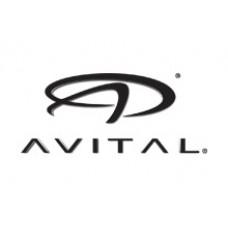 AVITAL